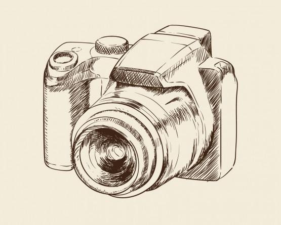 Photographe à bord